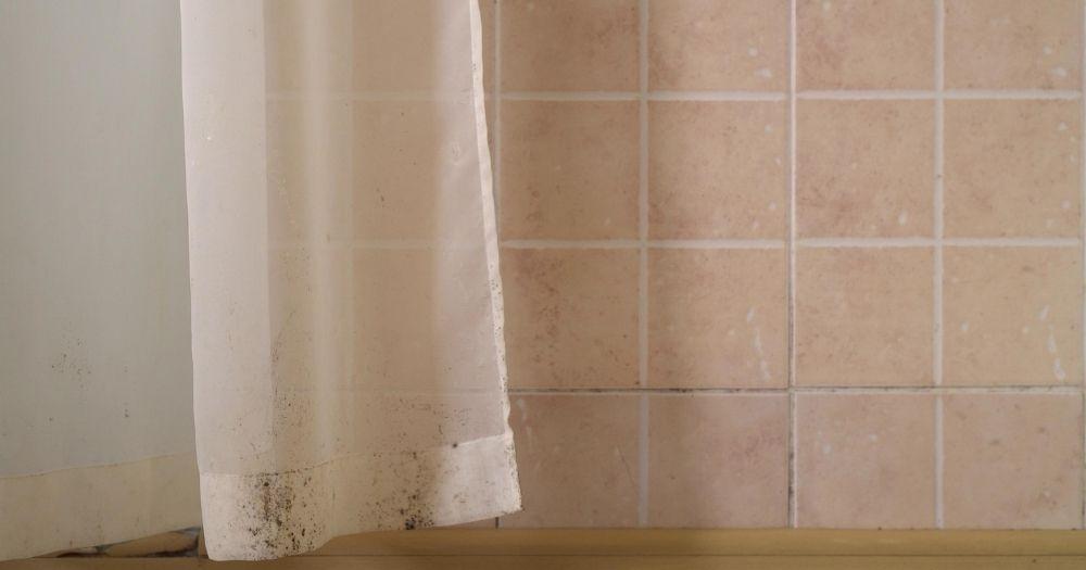 Καθαρισμός κουρτινών, μούχλα σε κουρτίνα μπάνιου